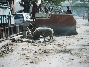 inde-ee-2002-032.jpg